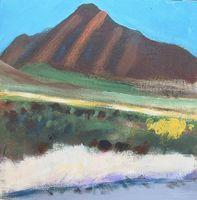 Madera Canyon abstraction-1