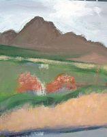 Madera Canyon abstraction-1-3