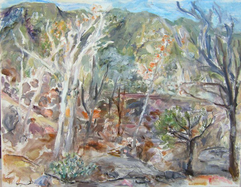 B. Port. Madera Canyon Sycamores (small)-1